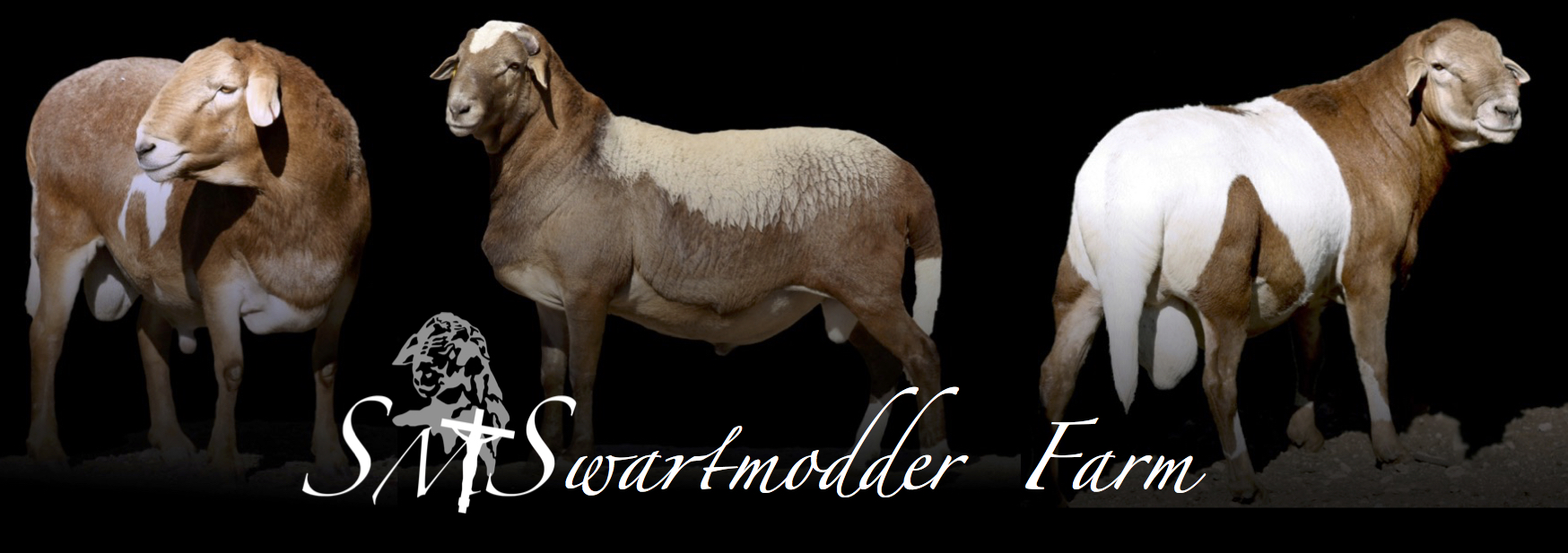 Swartmodder Farm